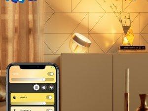 Лимитирана серия настолни лампи Philips