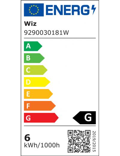 WiZ Wi-Fi LED лампа 25W G200 E27 Amb TW 871869978683000
