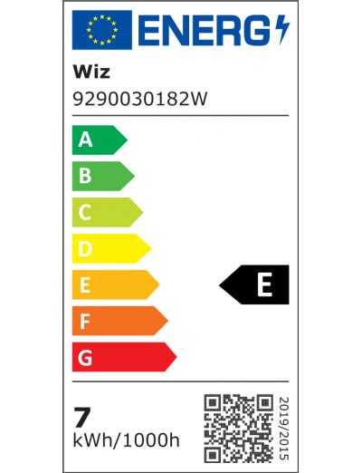 WiZ Wi-Fi LED лампа 60W G95 Globe E27 TW CL 871869978669400