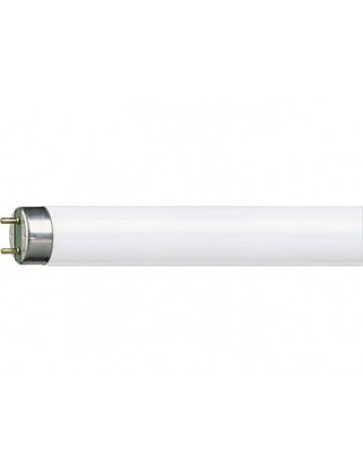 Philips Луминисцентна лампа MASTER TL-D тръбна 36 W G13 неутрална светлина
