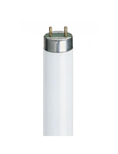 Philips Луминисцентна лампа MASTER TL-D тръбна 58 W G13 студена светлина